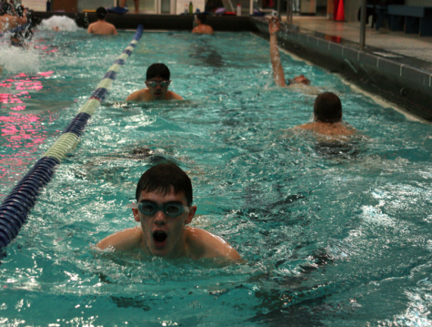 Online Exclusive: New diving coach infuses structure