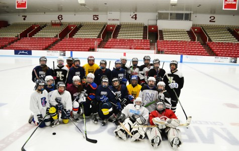 Girls ice hockey joins Newton South's team