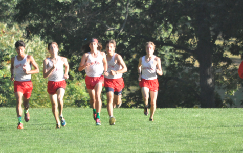 The boys cross country team races against Walpole and Norwood on Oct. 7, 2015. According to Triedman, the lack of fans at cross country meets is disheartening.
