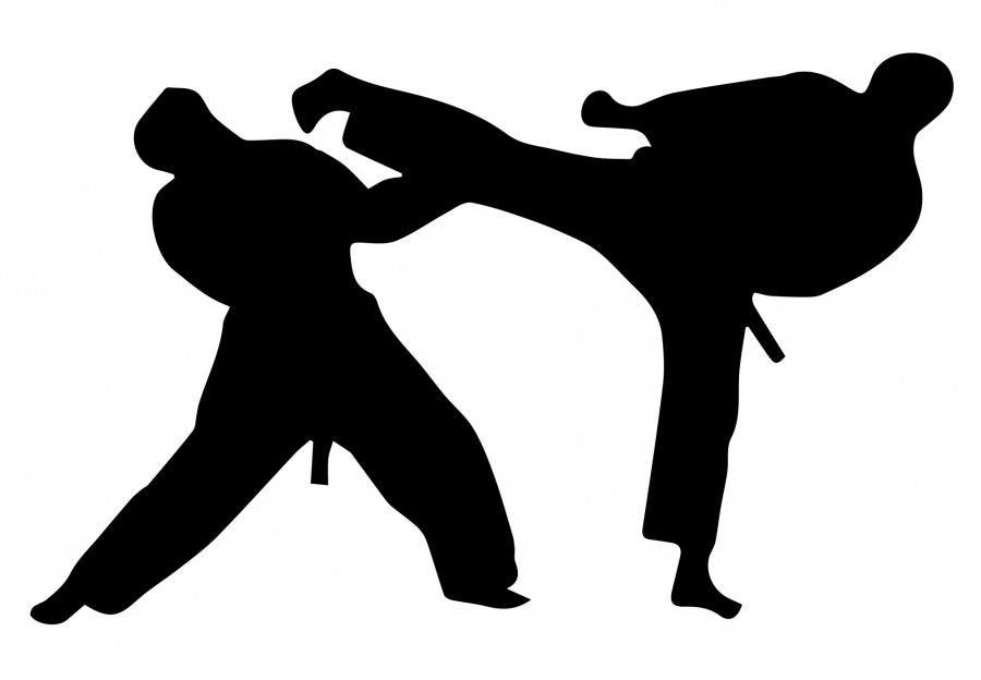 Junior Nick Hur cited Taekwondo as promoting multiple health benefits, such as improving strength, self-defense technique, and overall well-being. Graphic by Mairin Quillen