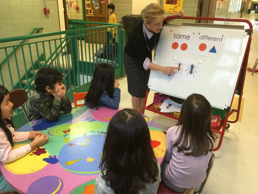 Baker teacher Laura Richardson teaches first graders using insects as examples.