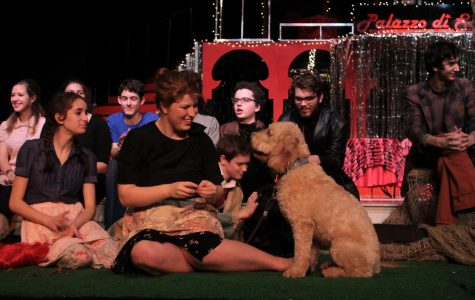 Cait Donohue sits with her dog, Teddy, on stage with the rest of the cast during the post-production talk.
