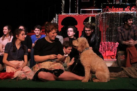 Fluffy friends join Shakespeare cast in latest production