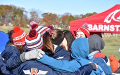 Girls cross country team competes at state meet