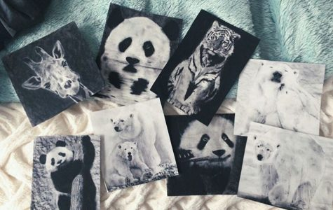 Co-founder and junior Yana Lazarova-Weng drew charcoal pieces depicting animals for an art show to raise money.