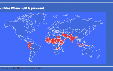 Map shows prevalence of FGM by country throughout the world.
