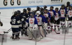 Girls hockey builds team with Newton South