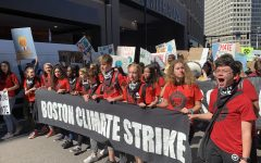 Fight against climate change goes beyond strike