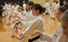 Hoshi excels in martial arts at national level