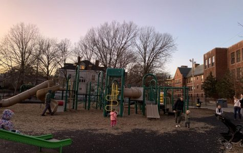 We reviewed every playground in Brookline…