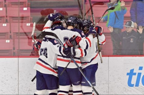 Girls hockey prevails over Newton North