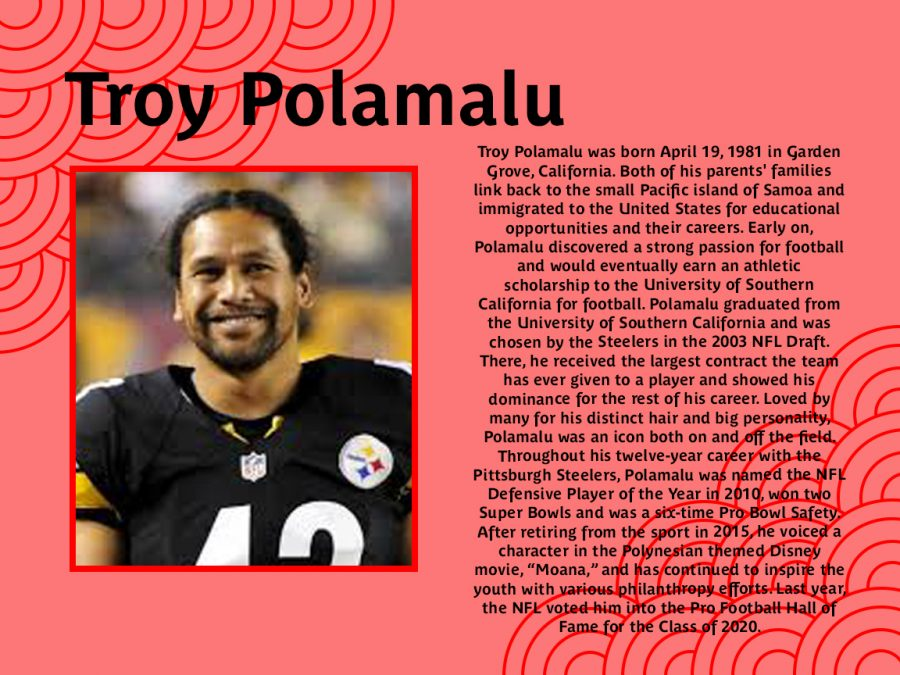 Troy+Polamalu