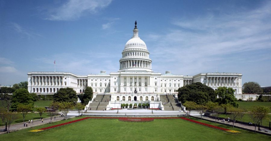 Located in Washington D.C., the United States Capitol is home to the Senate and the House of Representatives.