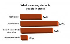 In a Sagamore survey conducted in early October, over all grades and with 141 respondents, students expressed concerns as well as satisfactions with the remote learning model.