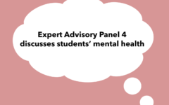 Expert Advisory Panel 4 discussed the logistics and metrics to consider for the optional four day cohort and students' mental health