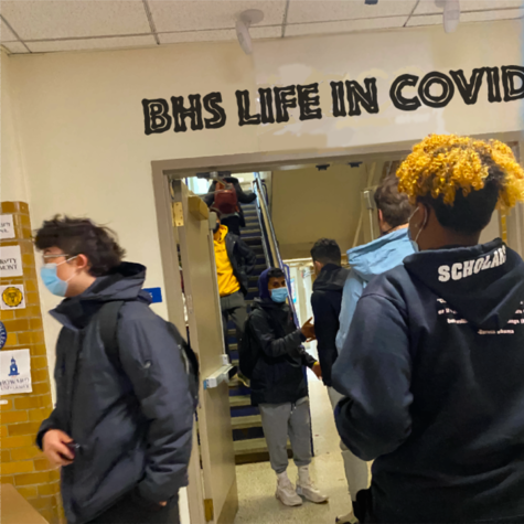 Brookline High School - A look at post cohort life