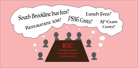 The Brookline School Committee Finance Subcommittee convened virtually to discuss logistical challenges and changes to the upcoming financial fiscal year.